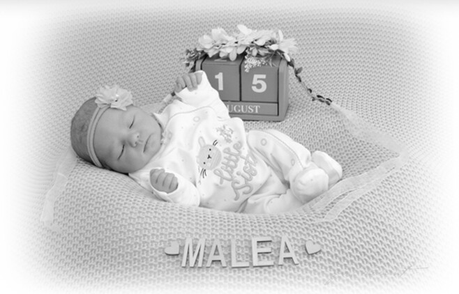 Malea